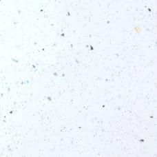 Ледяная искра белая Глянец  №55